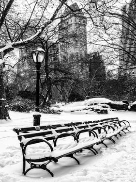 A Bench and Lamppost Snow in Central Park by Philippe Hugonnard