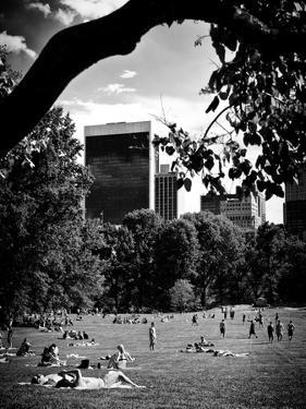 A Summer in Central Park, Manhattan, New York City, Black and White Photography by Philippe Hugonnard
