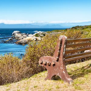 Awesome South Africa Collection Square - Lonely Bench II by Philippe Hugonnard