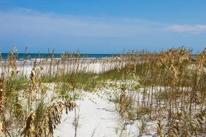 Beach Scene - Florida - United States by Philippe Hugonnard
