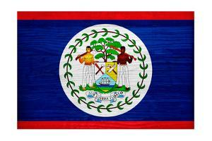 Belize Flag Design with Wood Patterning - Flags of the World Series by Philippe Hugonnard