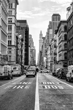 Black Manhattan Collection - Fire Lane & Bus Only by Philippe Hugonnard