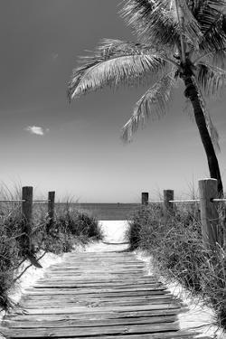 Boardwalk on the Beach - Florida by Philippe Hugonnard
