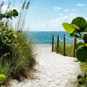 Boardwalk on the Beach - Miami - Florida by Philippe Hugonnard