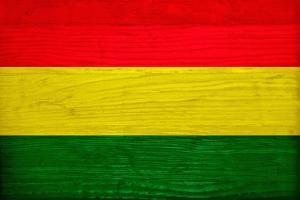 Bolivia Flag Design with Wood Patterning - Flags of the World Series by Philippe Hugonnard