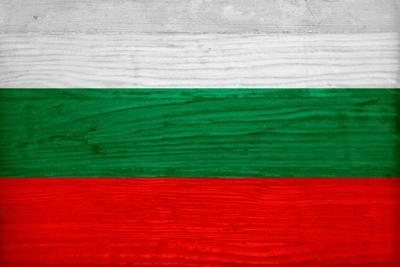 Bulgaria Flag Design with Wood Patterning - Flags of the World Series