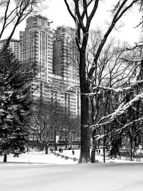 Central Park in the Snow by Philippe Hugonnard