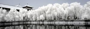 China 10MKm2 Collection - Another Look - Reflections by Philippe Hugonnard