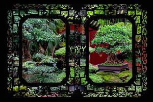 China 10MKm2 Collection - Asian Window - Bonsai Trees by Philippe Hugonnard