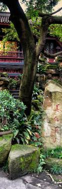 China 10MKm2 Collection - Chinese Garden by Philippe Hugonnard