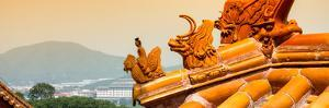 China 10MKm2 Collection - Detail of Lama Temple by Philippe Hugonnard