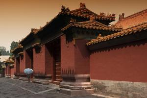 China 10MKm2 Collection - Forbidden City Architecture by Philippe Hugonnard