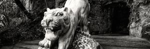 China 10MKm2 Collection - Lion - Buddhist Sculpture by Philippe Hugonnard