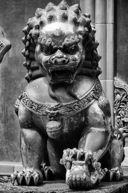 China 10MKm2 Collection - Lion Statue - Forbidden City by Philippe Hugonnard