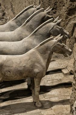 China 10MKm2 Collection - Terracotta Warriors and Horses by Philippe Hugonnard