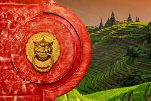 China 10MKm2 Collection - The Door God - Rice Terraces by Philippe Hugonnard