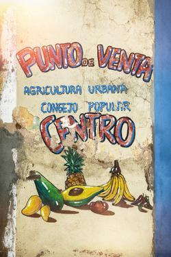 Cuba Fuerte Collection - Fruits & Vegetables by Philippe Hugonnard