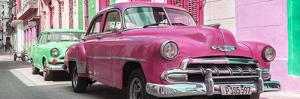 Cuba Fuerte Collection Panoramic - Two Chevrolet Cars Pink and Green by Philippe Hugonnard