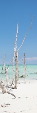 Cuba Fuerte Collection Panoramic - Wild White Sand Beach II by Philippe Hugonnard