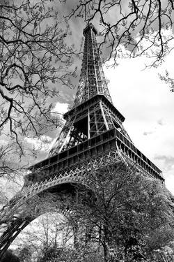 Eiffel Tower - Paris - France - Europe by Philippe Hugonnard