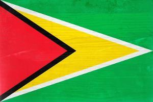 Guyana Flag Design with Wood Patterning - Flags of the World Series by Philippe Hugonnard