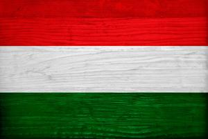 Hungary Flag Design with Wood Patterning - Flags of the World Series by Philippe Hugonnard