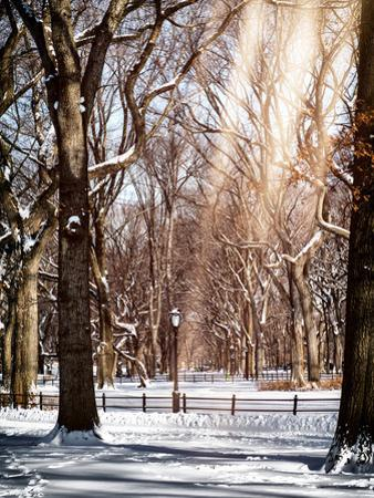 Instants of NY Series - Winter Snow in Central Park by Philippe Hugonnard