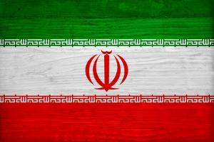 Iran Flag Design with Wood Patterning - Flags of the World Series by Philippe Hugonnard
