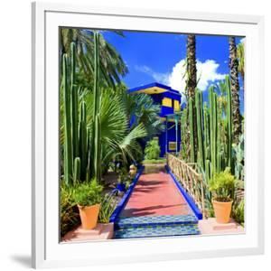 Jardin Majorelle - Marrakech - Morocco - North Africa - Africa by Philippe Hugonnard