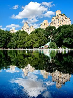 Landscape Mirror, Central Park, Conservatory Water, Manhattan, New York, United State by Philippe Hugonnard