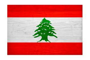 Lebanon Flag Design with Wood Patterning - Flags of the World Series by Philippe Hugonnard
