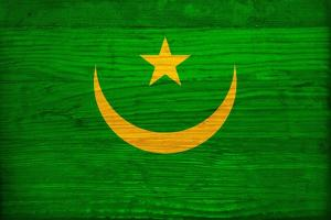 Mauritania Flag Design with Wood Patterning - Flags of the World Series by Philippe Hugonnard