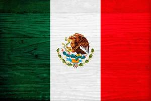 Mexico Flag Design with Wood Patterning - Flags of the World Series by Philippe Hugonnard