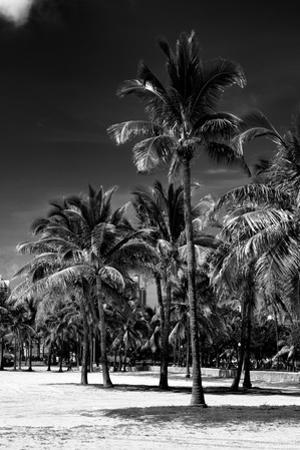 Miami Beach - South Beach - Florida by Philippe Hugonnard