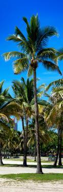 Miami Beach - South Beach - Florida by Philippe Hugonnard