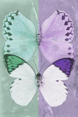 Miss Butterfly Duo Formoia - Coral Green & Mauve by Philippe Hugonnard