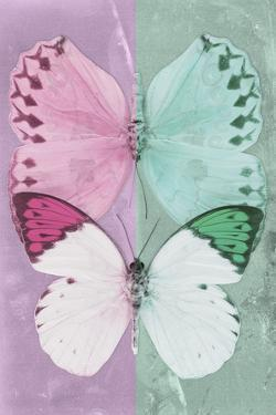 Miss Butterfly Duo Formoia - Pink & Coral Green by Philippe Hugonnard