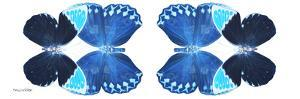 Miss Butterfly Duo Heboformo Pan - X-Ray White Edition II by Philippe Hugonnard