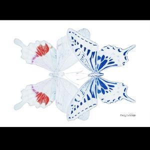 Miss Butterfly Duo Parisuthus Sq - X-Ray B&W Edition by Philippe Hugonnard