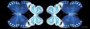Miss Butterfly Duo Stichatura Pan - X-Ray Black Edition II by Philippe Hugonnard