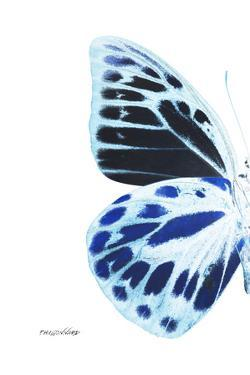 Miss Butterfly Prioneris - X-Ray Left White Edition by Philippe Hugonnard