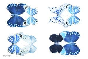 Miss Butterfly X-Ray Duo White IV by Philippe Hugonnard