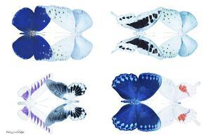 Miss Butterfly X-Ray Duo White by Philippe Hugonnard