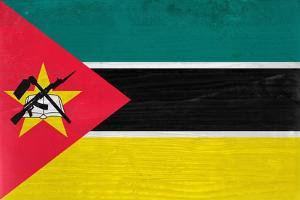 Mozambique Flag Design with Wood Patterning - Flags of the World Series by Philippe Hugonnard