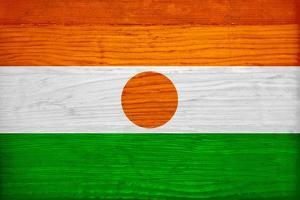 Niger Flag Design with Wood Patterning - Flags of the World Series by Philippe Hugonnard