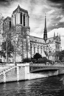 Notre Dame Cathedral - Paris - France by Philippe Hugonnard