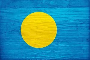 Palau Flag Design with Wood Patterning - Flags of the World Series by Philippe Hugonnard