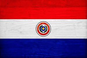 Paraguay Flag Design with Wood Patterning - Flags of the World Series by Philippe Hugonnard