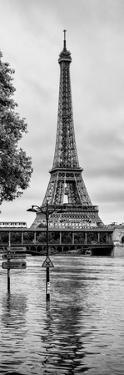 Paris sur Seine Collection - Along the Seine V by Philippe Hugonnard
