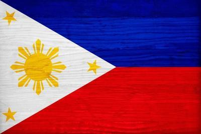 Philippines Flag Design with Wood Patterning - Flags of the World Series
